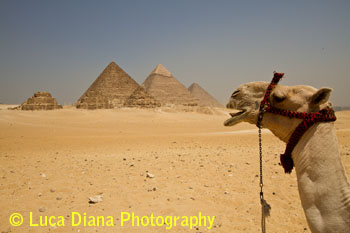 Ancient Architecture - The Pyramids at Giza